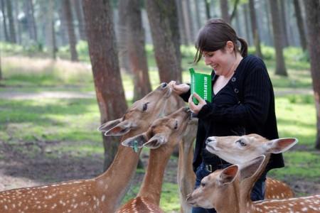 Naturwildpark Granat Haltern am See | Hotels ...