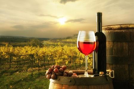 Straußen- und Besenwirtschaften findet man in Weinbaugebieten