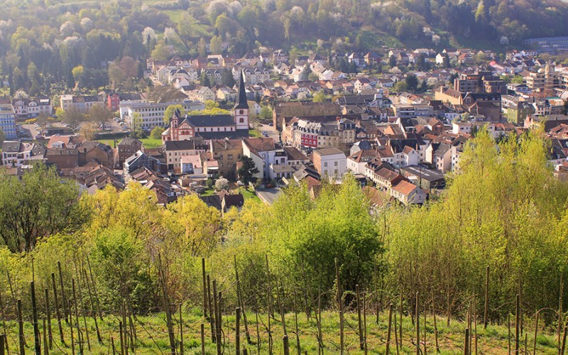 Ein Blick über die Stadt Merzig im Saarland