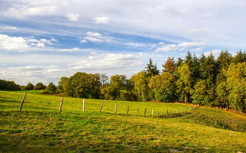 Die Ferienregion Niederrhein bezaubert durch die grüne Landschaft