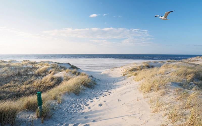 Nordsee, wie man sie sich vorstellt