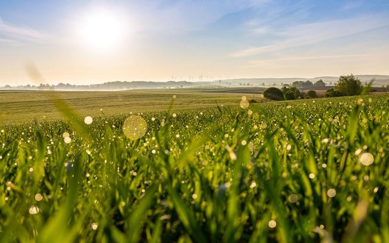 Weites Land im hohen Norden - die Uckermark