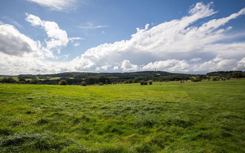 Weites Land, viel Grün - der Westerwald