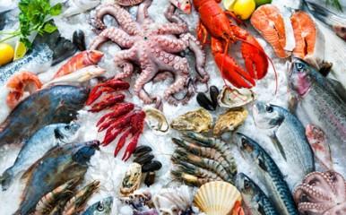 Frisch ein Genuss - Fisch und Meeresfrüchte